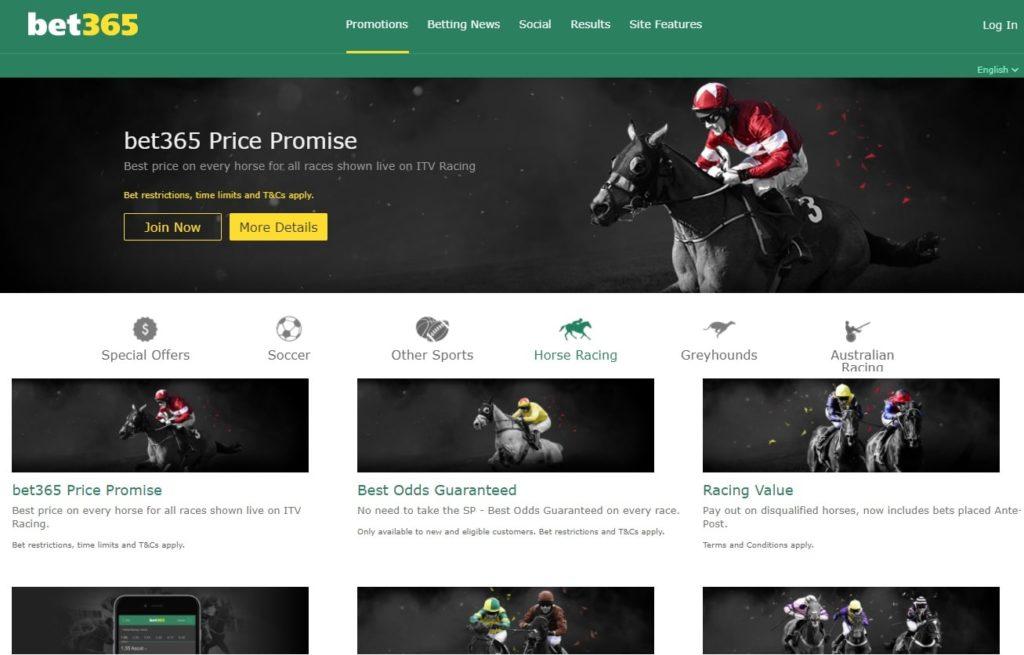Beginner-friendly horse racing site